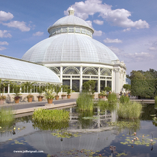 New_york_botanical_gardenconservato